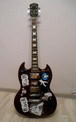 лектро гитара J&D JD-SG100   аксессуары